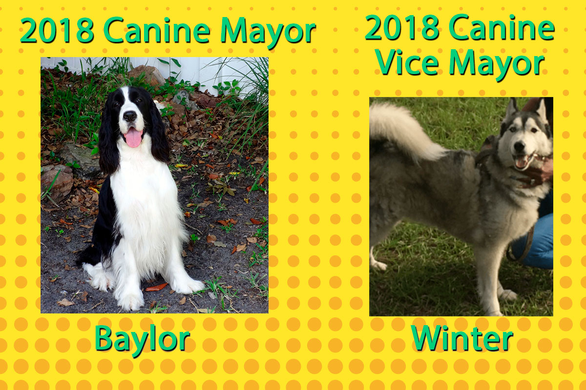 2018 Canine Mayor winners